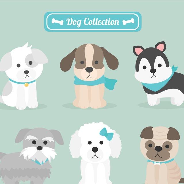 Cerco Cuccioli Shop Online