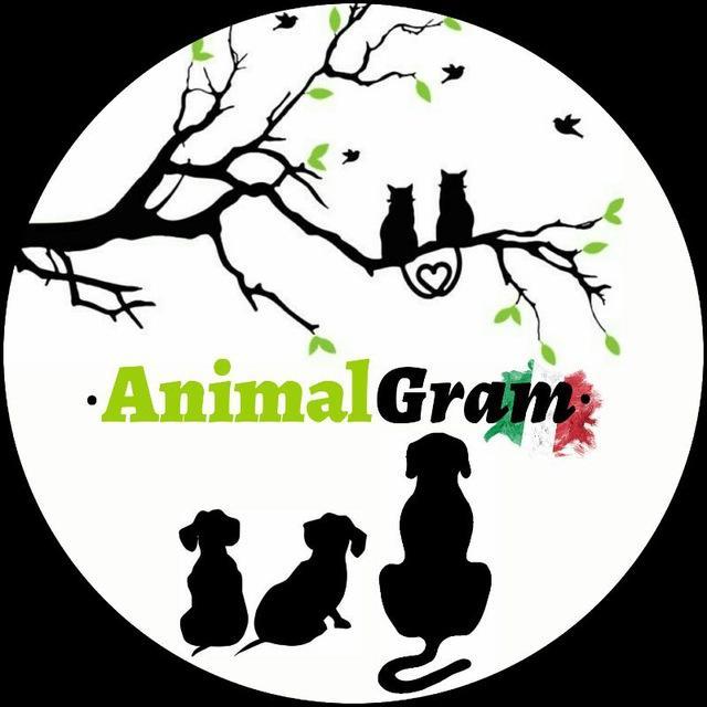AnimalGram
