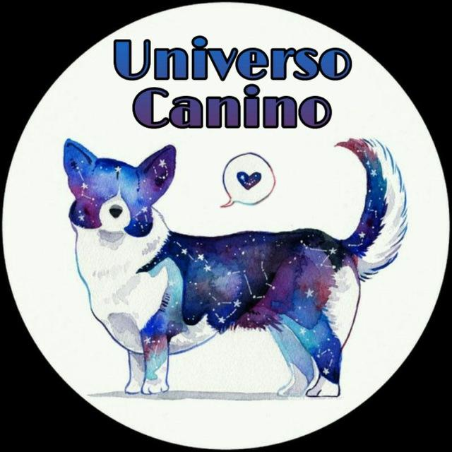 Universo Canino