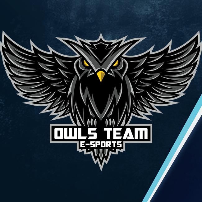 OwlsTeamIT Channel